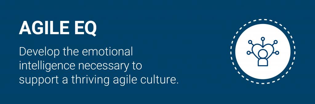 Agile EQ banner